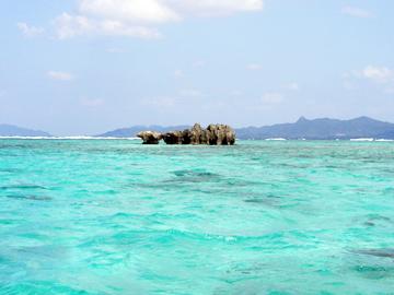 石垣島の珊瑚礁